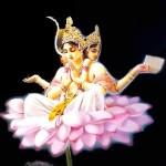 Brahma Samhita App