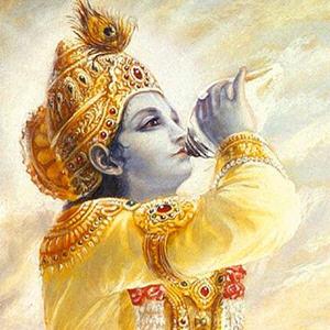 Gita Daily